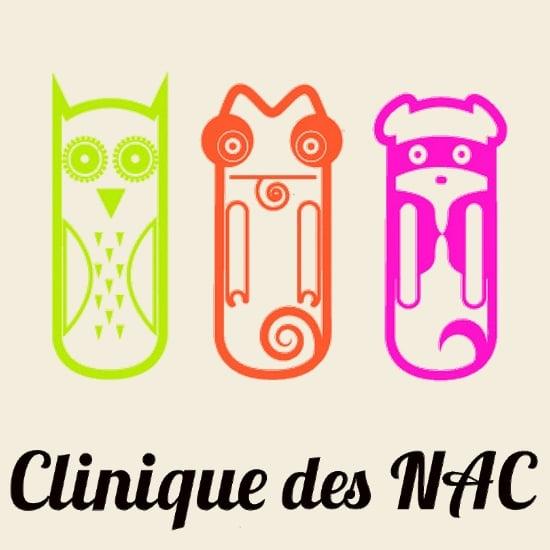 Our visit to the Clinique Vétérinaire des NAC in Toulouse – France