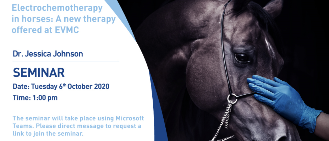 Seminar on Electrochemotherapy in horses: A new therapy offered at EVMC
